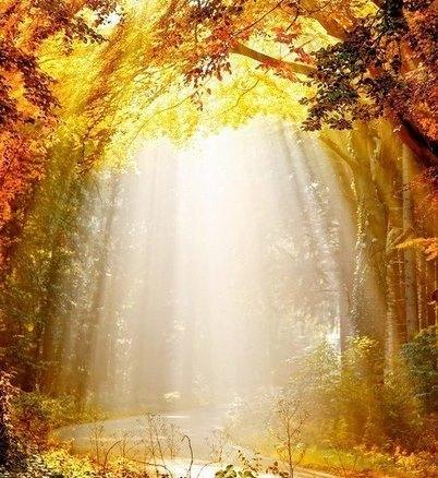 ПРАКТИКА.Зерно духа- Это программа матрицы божественного здоровья.КАК УЗНАТЬ АКТИВИРОВАНО ИЛИ НЕТ ЗЕРНО ДУХА?